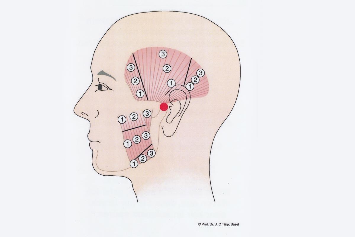Zahnarzt Hennef - Funktionstherapie